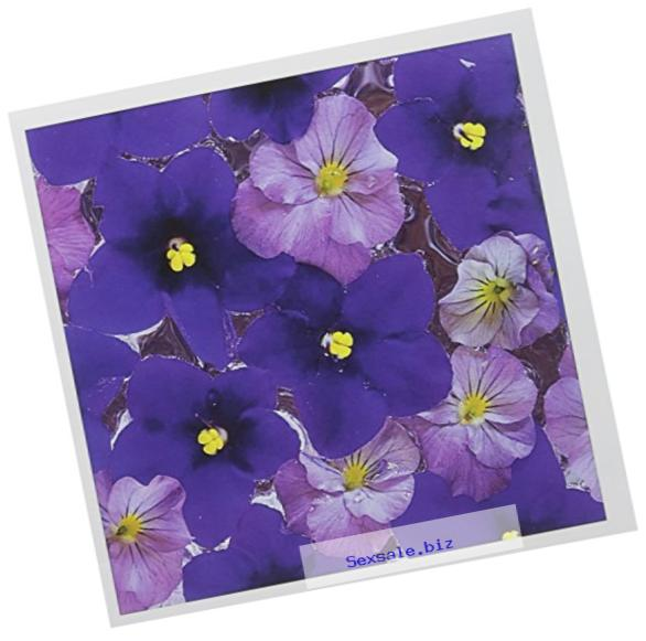 3dRose Floating flower design, Sammamish Washington - US48 DGU0144 - Darrell Gulin - Greeting Cards, 6 x 6 inches, set of 6 (gc_95350_1)